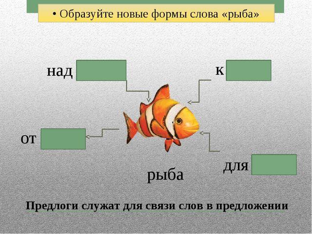 • Образуйте новые формы слова «рыба» рыба к рыбе над рыбой от рыбы для рыбы П...