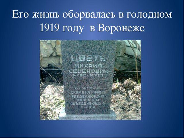 Его жизнь оборвалась в голодном 1919 году в Воронеже