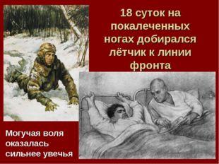 18 суток на покалеченных ногах добирался лётчик к линии фронта Могучая воля о