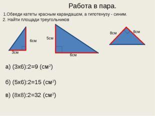 Работа в пара. 1.Обведи катеты красным карандашом, а гипотенузу - синим. 2.