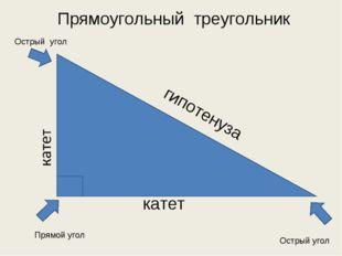 катет гипотенуза Прямоугольный треугольник Прямой угол Острый угол Острый угол