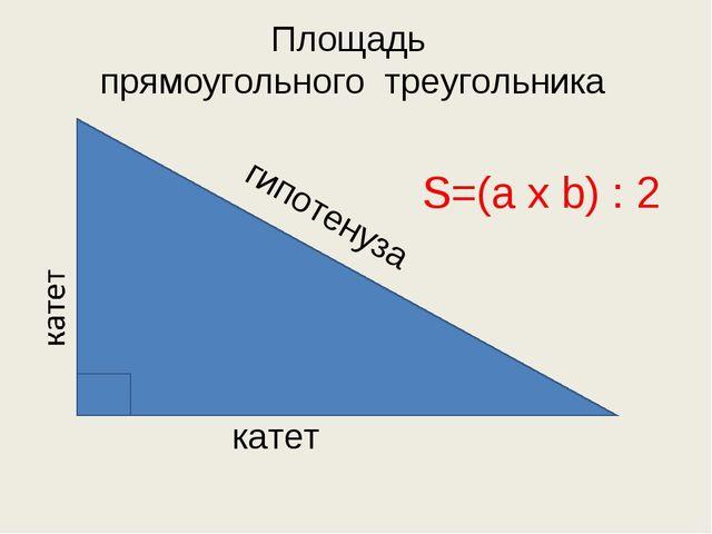 катет гипотенуза Площадь прямоугольного треугольника S=(a x b) : 2
