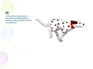 22 Собака была привязана к десятиметровой веревке, а прошла триста метров. Ка