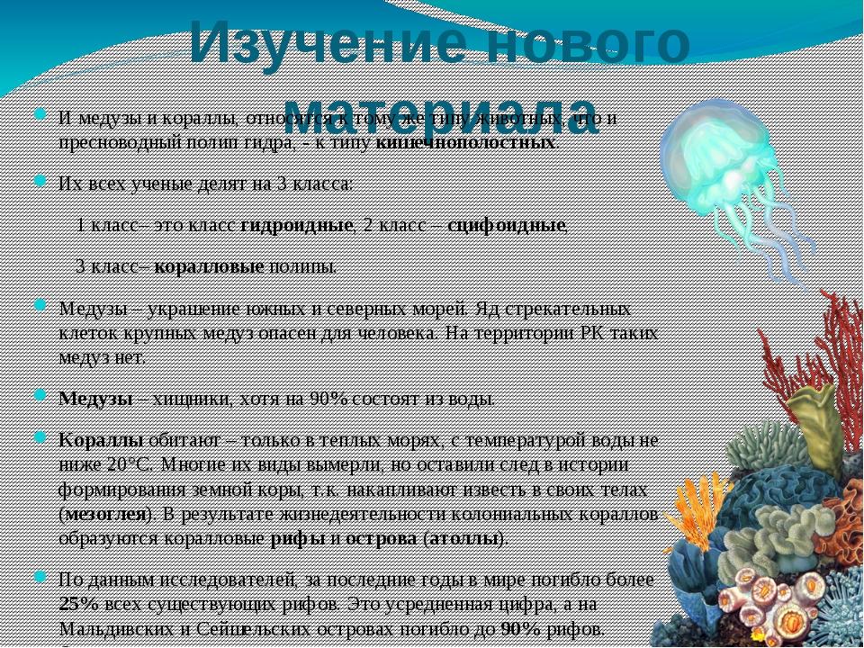 Изучение нового материала И медузы и кораллы, относятся к тому же типу животн...