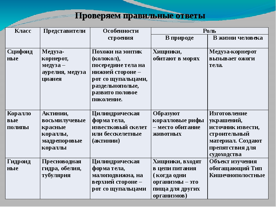 Проверяем правильные ответы Класс Представители Особенности строения Роль В п...