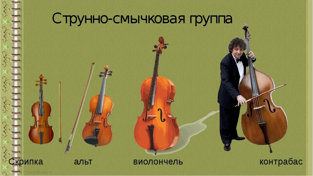 Струнно-смычковая группа Скрипка альт виолончель контрабас