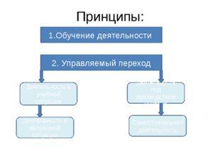 Принципы: 1.Обучение деятельности 2. Управляемый переход Деятельность в учебн