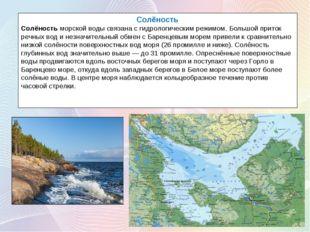Солёность Солёностьморской воды связана с гидрологическим режимом. Большой п