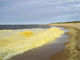 Источники http://www.factruz.ru/world_ocean_2/yellow-sea.htm http://znaeteli