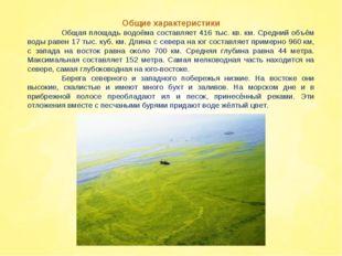 Общие характеристики Общая площадь водоёма составляет 416 тыс. кв. км. Средн