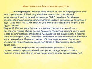 Минеральные и биологические ресурсы Энергоресурсы Жёлтое море богато не тол