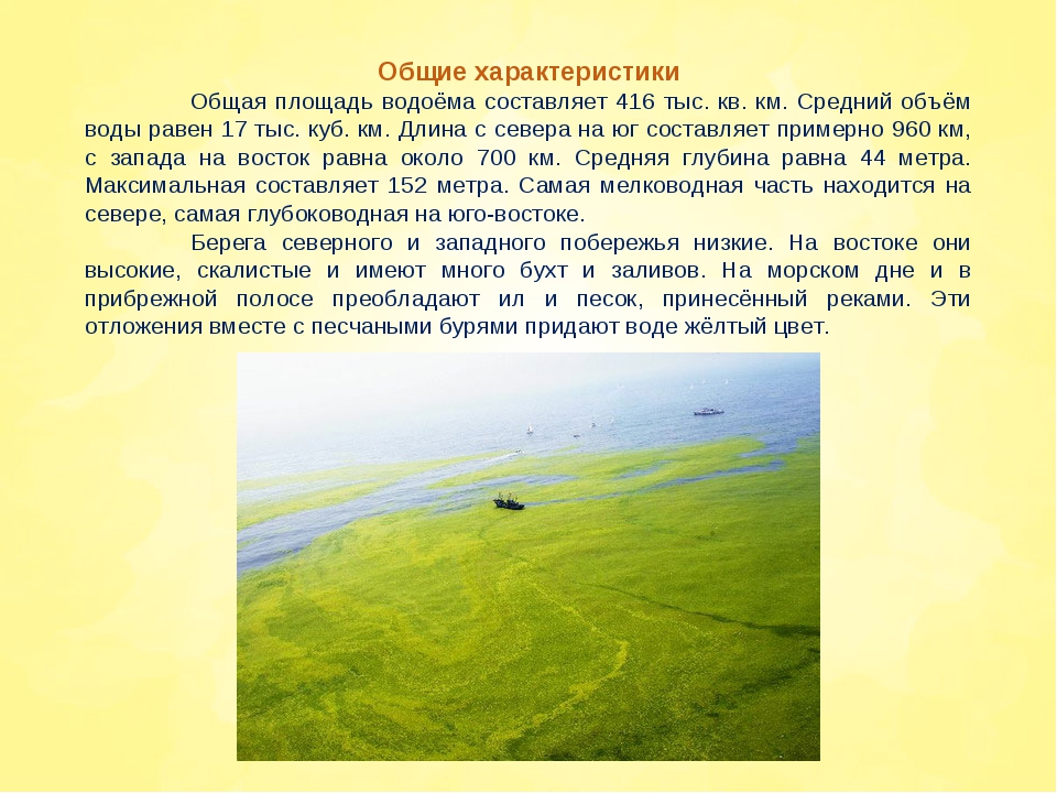 Общие характеристики Общая площадь водоёма составляет 416 тыс. кв. км. Средн...