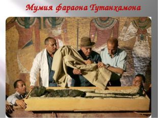 Мумия фараона Тутанхамона