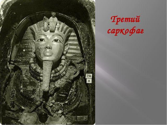 Третий саркофаг