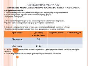 ЛАБОРАТОРНАЯ РАБОТА №12 ИЗУЧЕНИЕ МИКРОПРЕПАРАТОВ КРОВИ ЛЯГУШКИ И ЧЕЛОВЕКА Ин