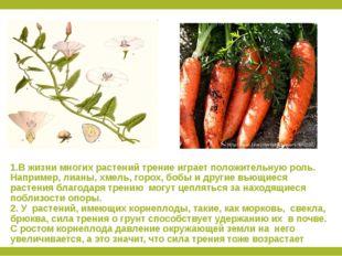 1.В жизни многих растений трение играет положительную роль. Например, лианы,