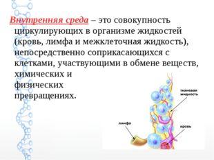 Внутренняя среда – это совокупность циркулирующих в организме жидкостей (кров
