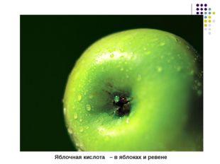 Яблочная кислота – в яблоках и ревене