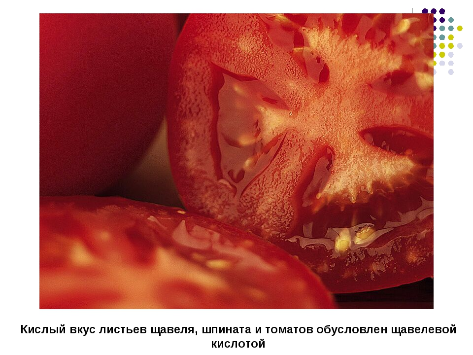 Кислый вкус листьев щавеля, шпината и томатов обусловлен щавелевой кислотой