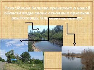 Река Чёрная Калитва принимает в нашей области воды своих основных притоков: р