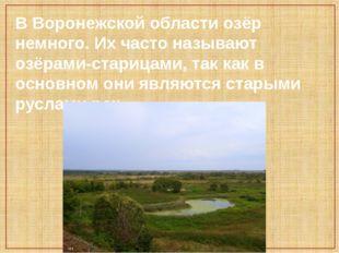 В Воронежской области озёр немного. Их часто называют озёрами-старицами, так