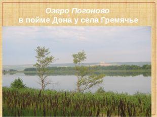 Озеро Погоново в пойме Дона у села Гремячье Хохольского района.