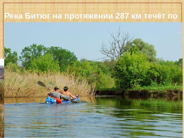 Река Битюг на протяжении 287 км течёт по нашей области.