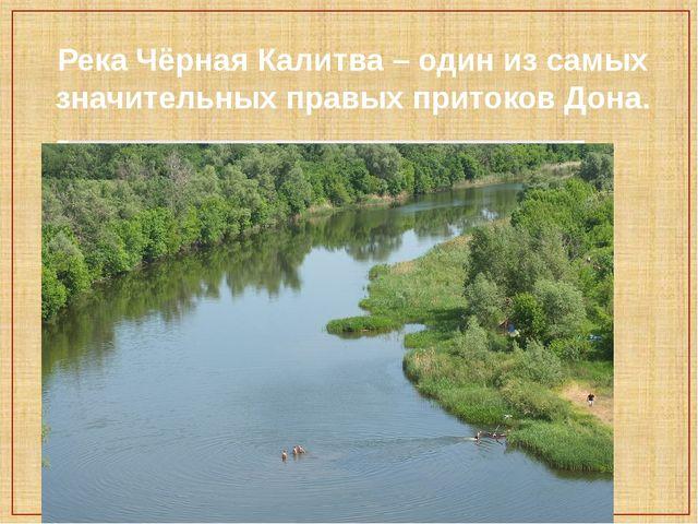 Река Чёрная Калитва – один из самых значительных правых притоков Дона.