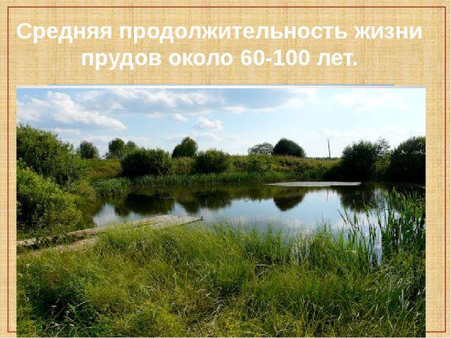 Средняя продолжительность жизни прудов около 60-100 лет.