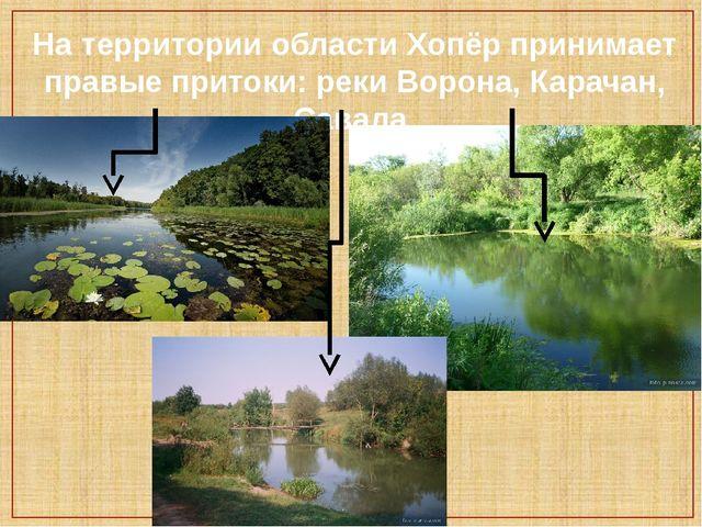 На территории области Хопёр принимает правые притоки: реки Ворона, Карачан, С...