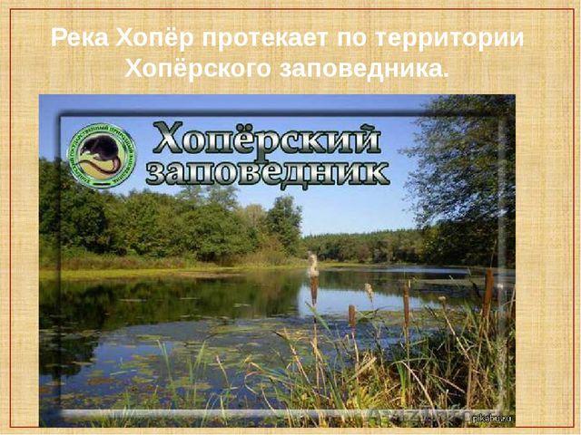 Река Хопёр протекает по территории Хопёрского заповедника.