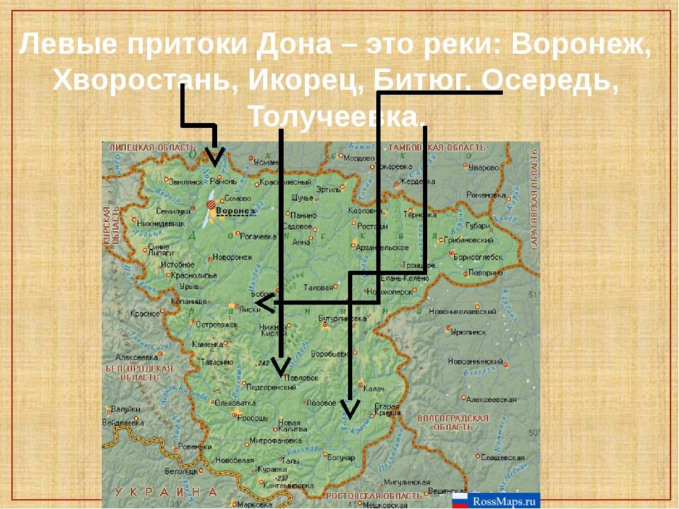 Левые притоки Дона – это реки: Воронеж, Хворостань, Икорец, Битюг, Осередь, Т...