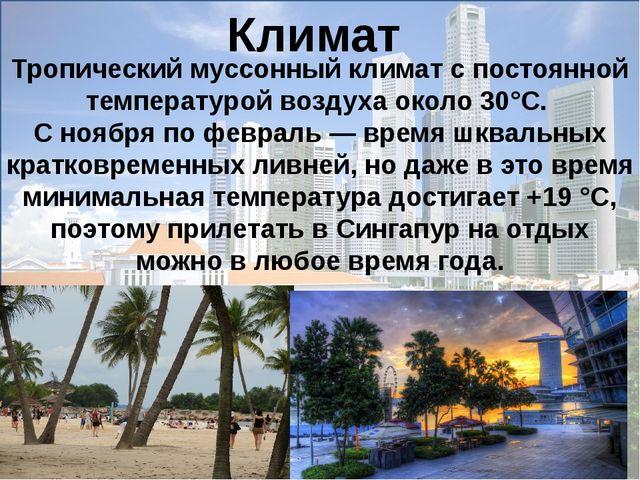 Тропический муссонный климат с постоянной температурой воздуха около 30°C. С...