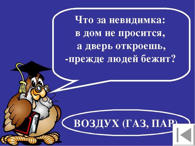 Что за невидимка: в дом не просится, а дверь откроешь, -прежде людей бежит? В...