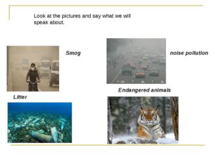 Litter Smog noise pollution Endangered animals Look at the pictures and say