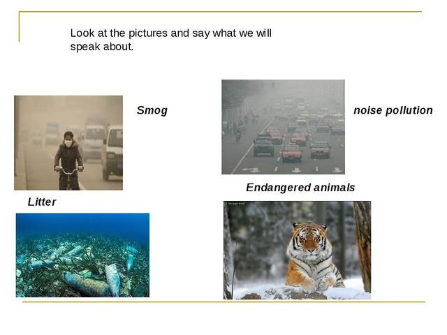 Litter Smog noise pollution Endangered animals Look at the pictures and say...
