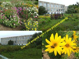 Это мой второй дом – моя родная школа