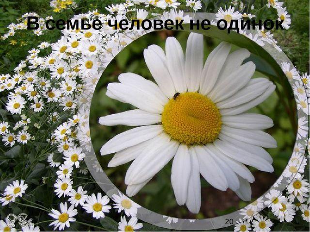 В семье человек не одинок Семья — гарант того, что человек не будет одинок. Ч...