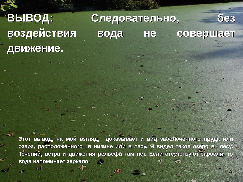 ВЫВОД: Следовательно, без воздействия вода не совершает движение. Этот вывод,...