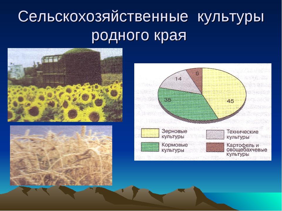 Сельскохозяйственные культуры родного края