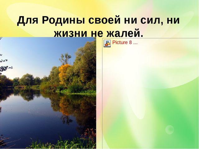 Для Родины своей ни сил, ни жизни не жалей.