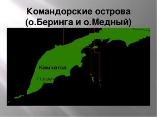 Командорские острова (о.Беринга и о.Медный)
