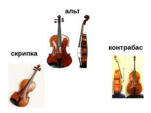 альт контрабас скрипка
