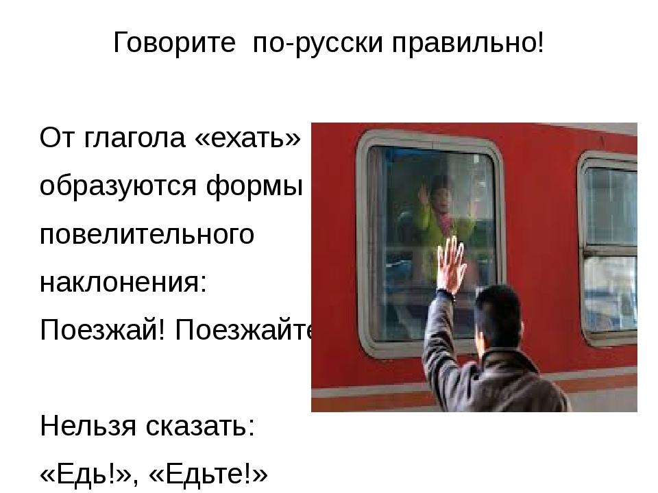 Говорите по-русски правильно! От глагола «ехать» образуются формы повелительн...
