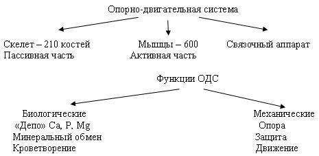 hello_html_3ed556f7.jpg