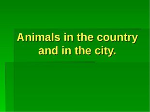 Animals in the country and in the city.
