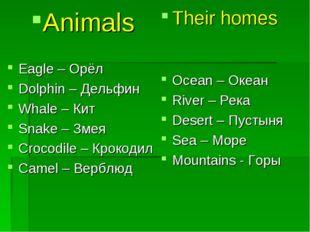 Animals Eagle – Орёл Dolphin – Дельфин Whale – Кит Snake – Змея Crocodile – К