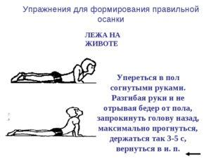 Упражнения для формирования правильной осанки ЛЕЖА НА ЖИВОТЕ Упереться в пол