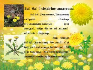 Бақбақ(Одуванчик, Taraxacum) –күрделі гүлділер тұқымдасынажататын көп жыл