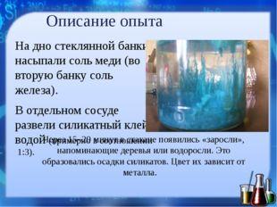 Описание опыта На дно стеклянной банки насыпали соль меди (во вторую банку со